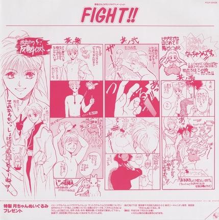 fight inlay
